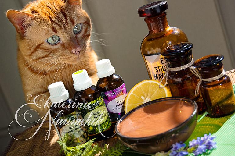 эфирные масла для кошек